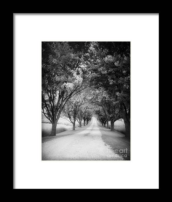 Driveway Framed Print featuring the photograph The Long Road Home by Edward Fielding