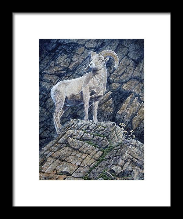 Ram Framed Print featuring the painting The Look Out by Mike Stinnett