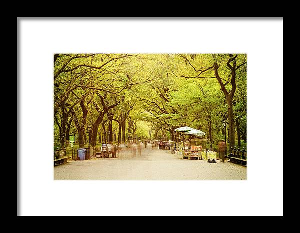 Central Park Framed Print featuring the photograph The Mall In Central Park New York City Fall Foliage by Silvio Ligutti