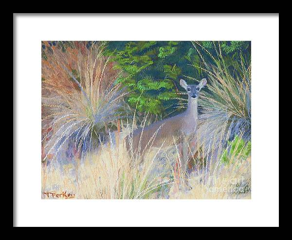 Deer Framed Print featuring the painting The Morning Staredown by Patricia Collins-Perkey