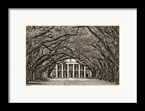 Oak Alley Plantation Framed Print featuring the photograph The Old South Sepia by Steve Harrington