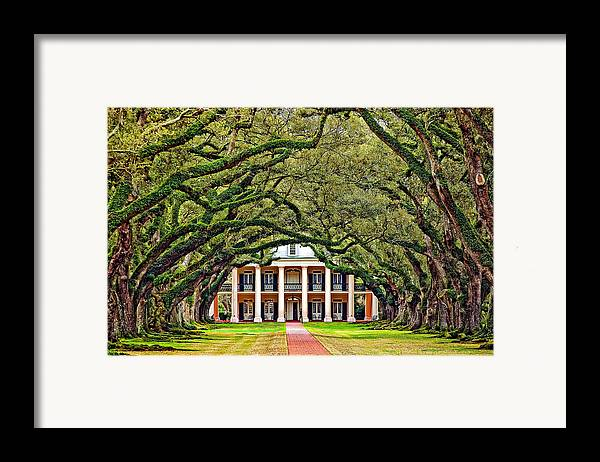 Oak Alley Plantation Framed Print featuring the photograph The Old South by Steve Harrington