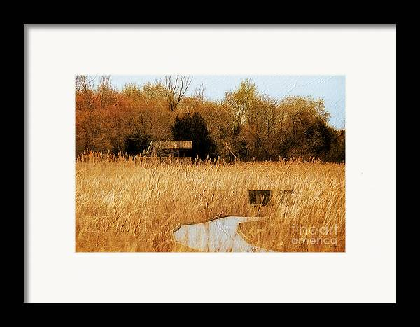 Marsh Framed Print featuring the photograph The Overlook by Lois Bryan