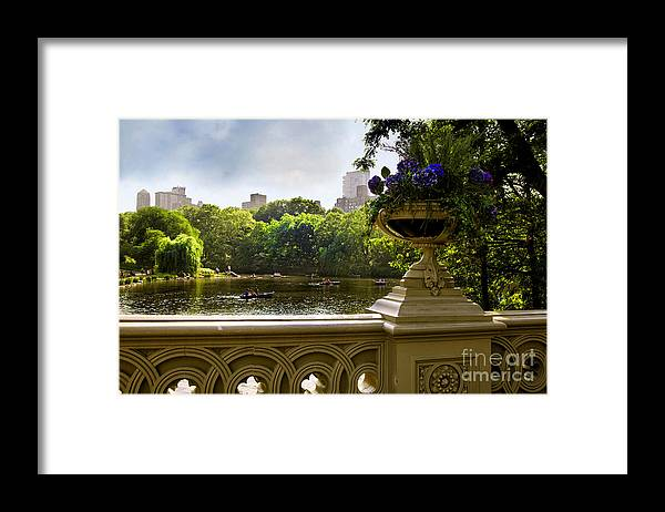 Park Framed Print featuring the photograph The Park On A Sunday Afternoon by Madeline Ellis