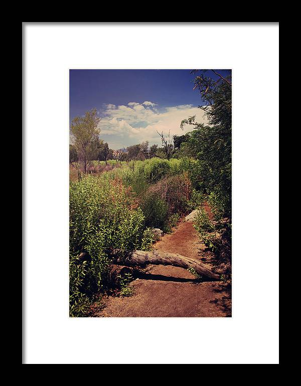 Big Morongo Canyon Preserve Framed Print featuring the photograph The Past Is Gone by Laurie Search
