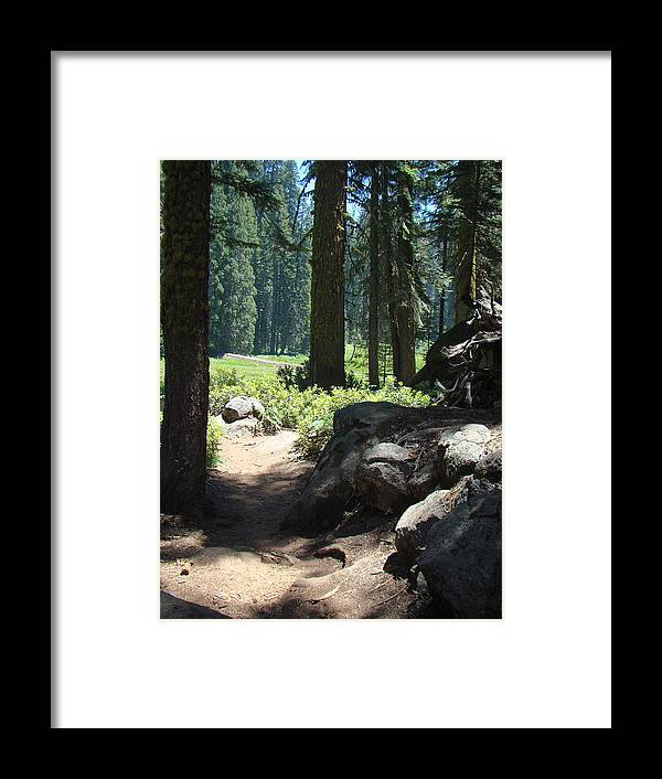 Forest Framed Print featuring the photograph The Path Less Traveled by Karen j Kobrin Cohen