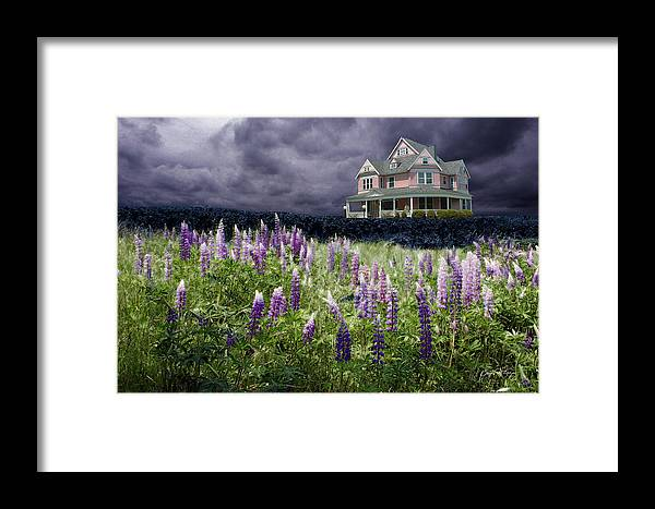 Pink Framed Print featuring the photograph The Pink House In The Lupine by Wayne King