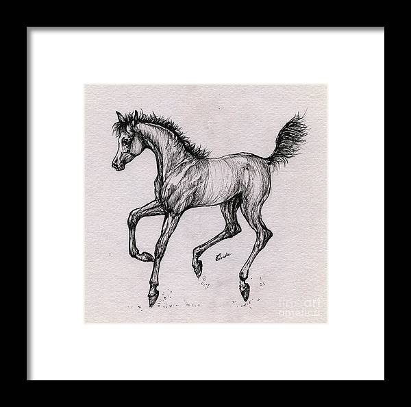 Foal Framed Print featuring the drawing The Playful Foal by Angel Ciesniarska