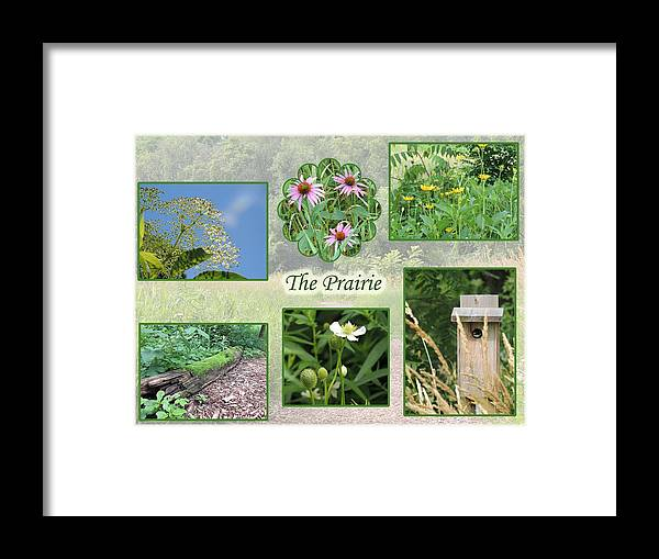 Collage Framed Print featuring the photograph The Prairie by Teresa Schomig