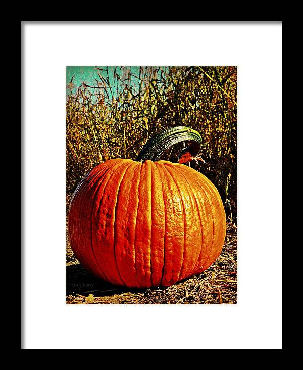 Halloween Framed Print featuring the photograph The Pumpkin by Chris Berry