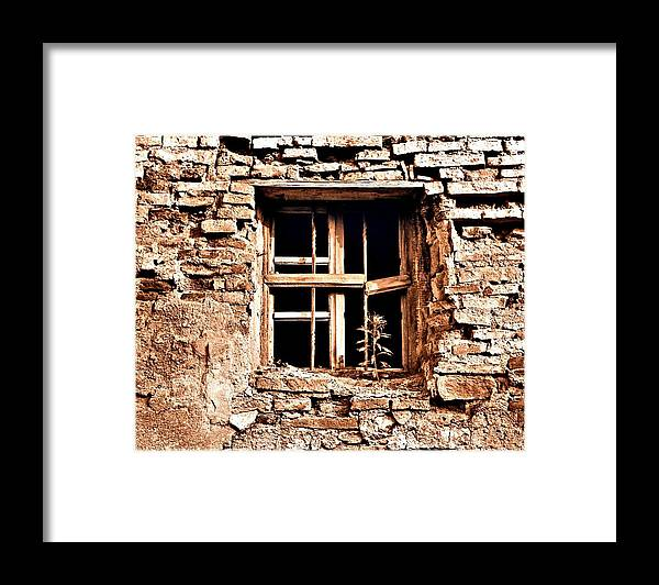 Art Framed Print featuring the photograph The Resilience of Life by ITI Ion Vincent Danu