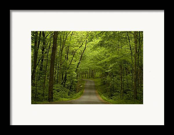 Road Framed Print featuring the photograph The Road Less Travelled by Andrew Soundarajan