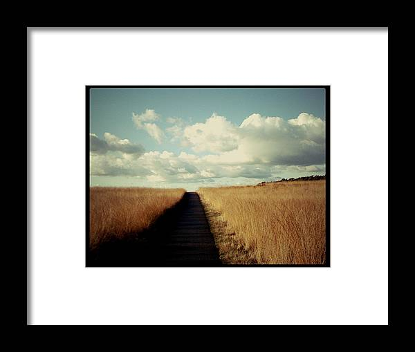 Road Framed Print featuring the photograph The Road Rarely Taken by Beril Sirmacek