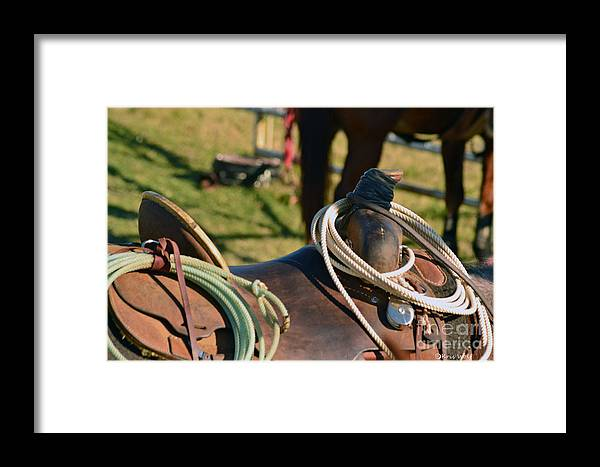 Horse Framed Print featuring the photograph The Ropin Rig by Kris Wolf