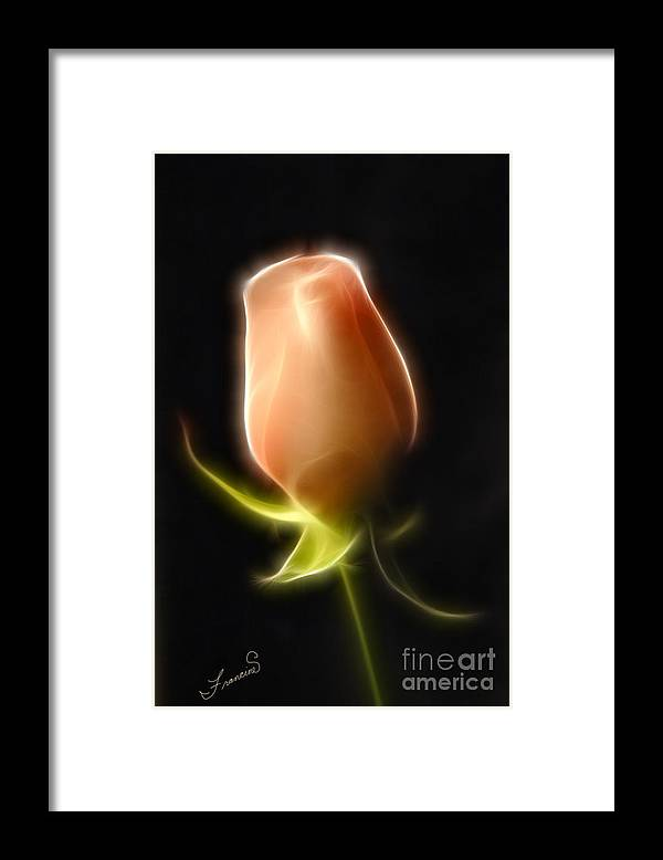 Rose Framed Print featuring the painting The Rose by Francine Dufour Jones