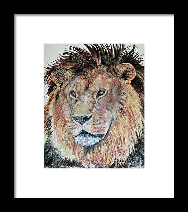 African Lion Framed Print featuring the pastel The Sentinel by Ann Marie Chaffin