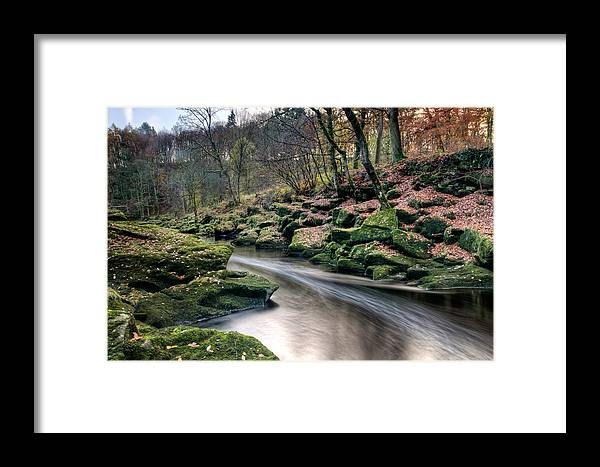 Trees Framed Print featuring the photograph The Shimmering Strid by Chris Frost