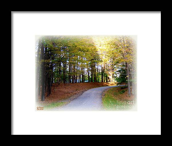 Landscape Framed Print featuring the photograph The Suns Rays by Rennae Christman