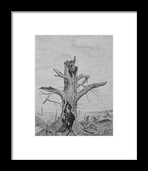 Realistic Drawing Framed Print featuring the drawing The Survivor by Dan Theisen