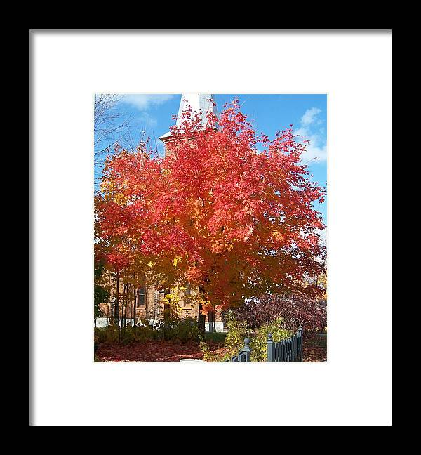 Tree Framed Print featuring the photograph The Tree By The Church - Photograph by Jackie Mueller-Jones