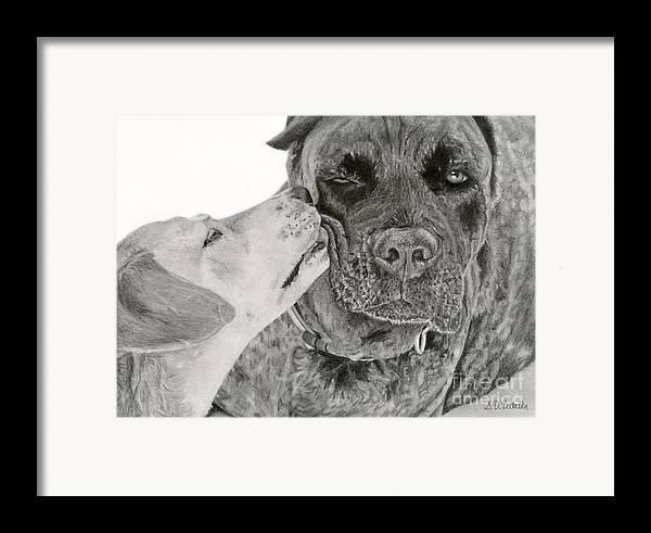 Dogs Framed Print featuring the drawing The Unconditional Love Of Dogs by Sarah Batalka