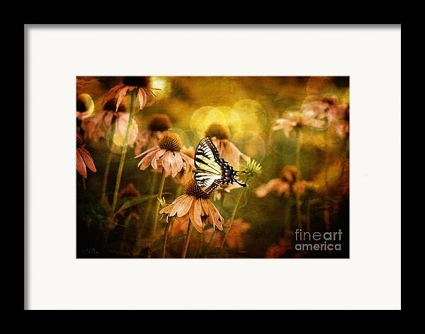 Floral Framed Print featuring the photograph The Very Young At Heart by Lois Bryan