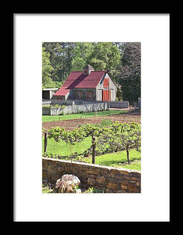 8316 Framed Print featuring the photograph The Vineyard Barn by Gordon Elwell
