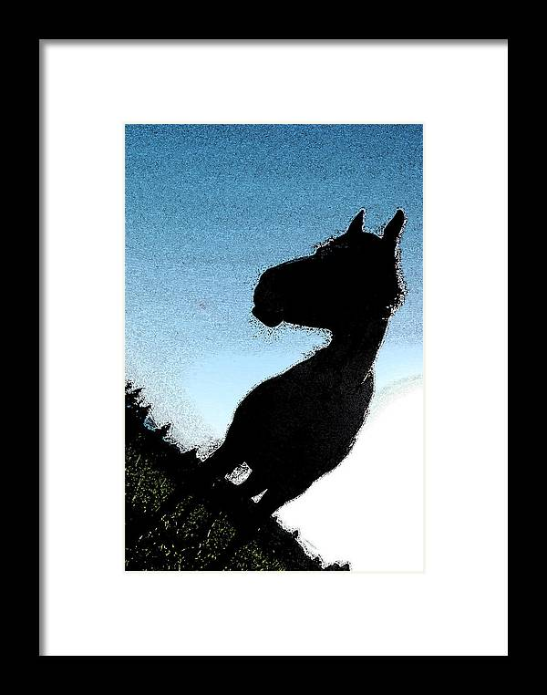 Horse Framed Print featuring the photograph The Visiter by Kathy Sampson