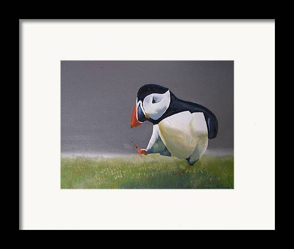 Puffin Framed Print featuring the painting The Walking Puffin by Eric Burgess-Ray