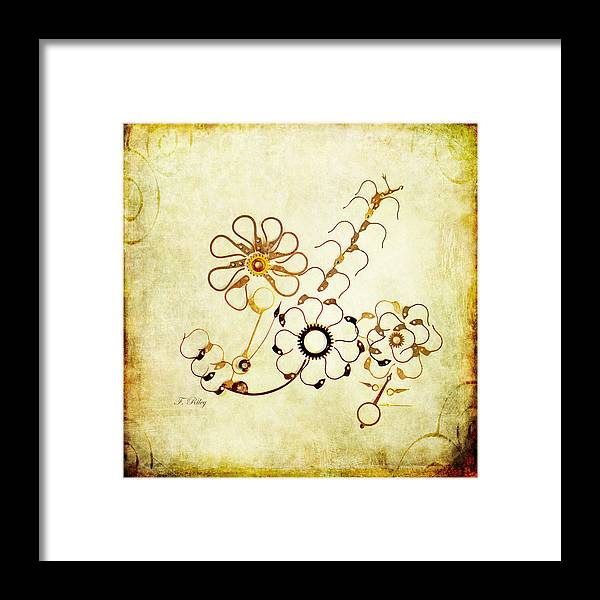 Flower Framed Print featuring the photograph The Watchmans Flower by Fran Riley