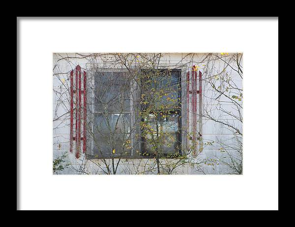 Window Framed Print featuring the photograph The Window by Carolyn Fletcher