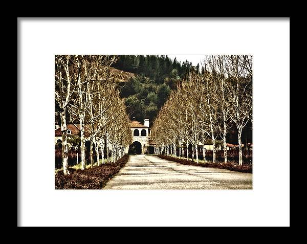 Winery Framed Print featuring the photograph The Winter Of Brassfield by Carolyn Marchetti