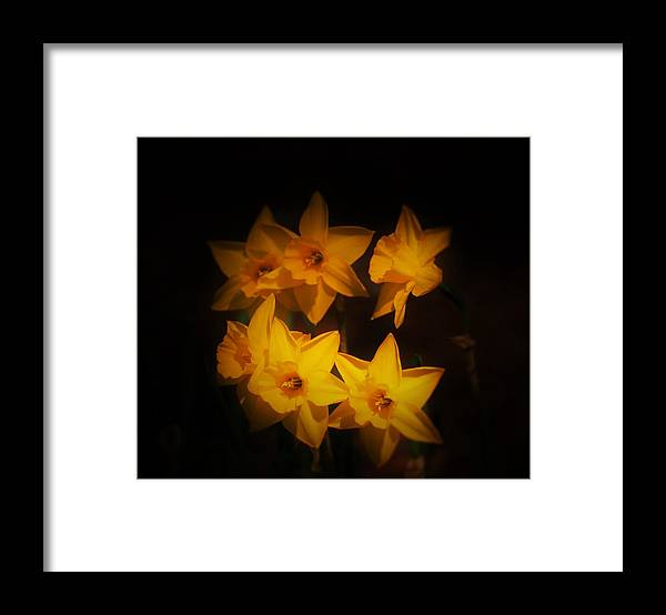 Yellow Framed Print featuring the photograph The Wonder Of Yellow by Sabasion Bentley-Dyess
