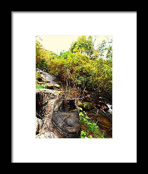 Old Shoes Framed Print featuring the photograph There Once Was A Garden That Lived In A Shoe by Allicat Photography