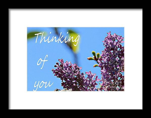 Thinking Of You Framed Print featuring the photograph Thinking Of You - Greeting Card - Lilacs by Barbara Griffin
