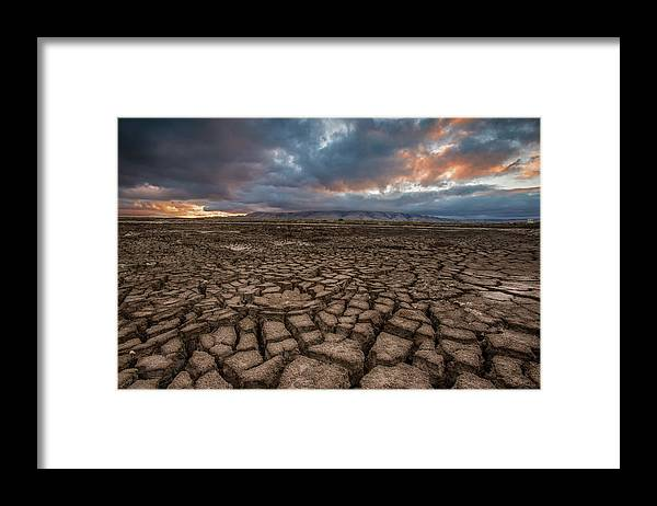 Tranquility Framed Print featuring the photograph Thirsty by Aaron Meyers
