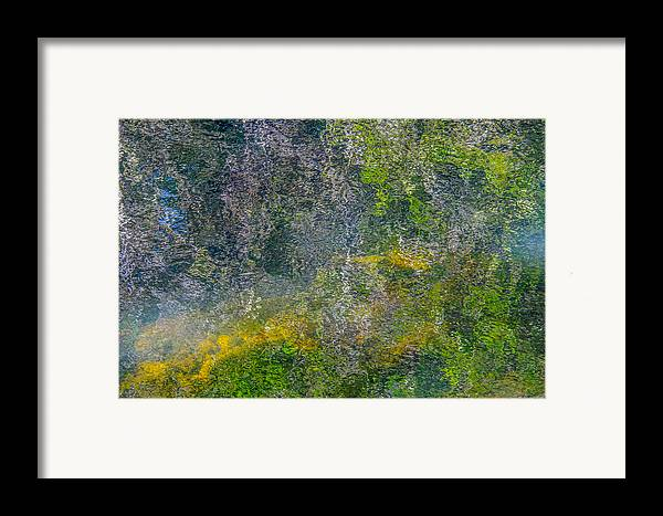 Abstract Framed Print featuring the photograph Thornton's Canvas by Roxy Hurtubise
