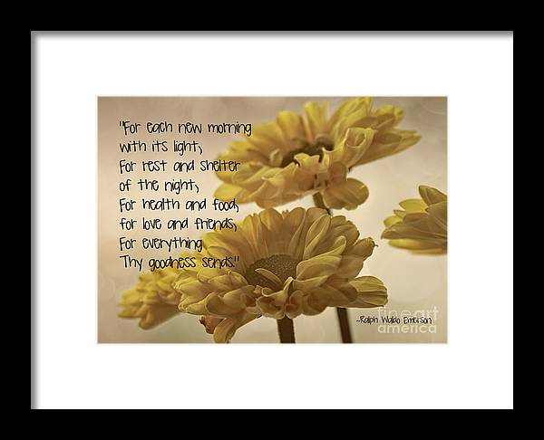 Yellow Flowers Close Framed Print featuring the photograph Thoughts Of Gratitude by Peggy Hughes