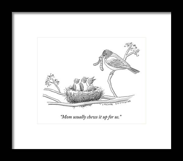 Three Baby Birds In A Nest Talk To A Grown Bird Framed Print by ...