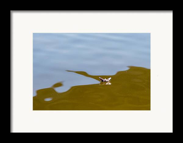 Alone Framed Print featuring the photograph Three Men In A Boat - Featured 3 by Alexander Senin