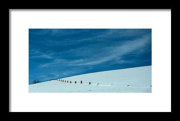 Winter Framed Print featuring the photograph Three Wire Winter by Tracy DelliQuadri