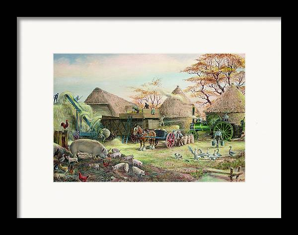Steam; Thresher; Farmyard Scene; Farm; Yard; Haystack; Farmers; Labourers; Shire Horse; Thatched; Roof; Roofs; Harvest; Family Of Pigs; Pig; Piglets; Sow; Rural; Thatch; Farm Framed Print featuring the painting Threshing In Kent by Dudley Pout