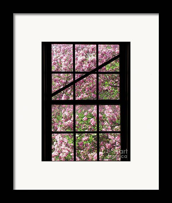 Window Framed Print featuring the photograph Through An Old Window by Olivier Le Queinec