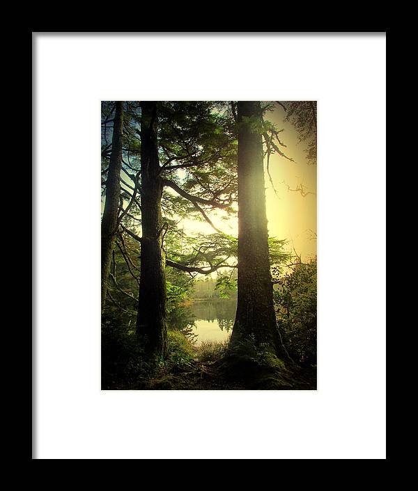 Lake Framed Print featuring the photograph Through The Forest To The Lake by Joyce Dickens