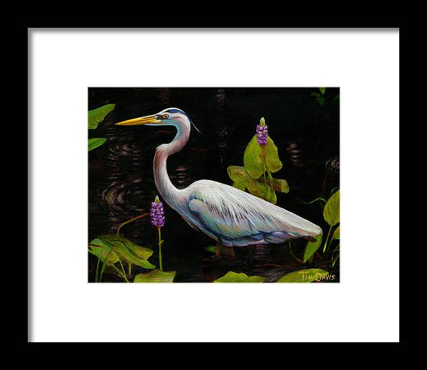 Heron Framed Print featuring the painting Through The Pickerelweed by Tim Davis