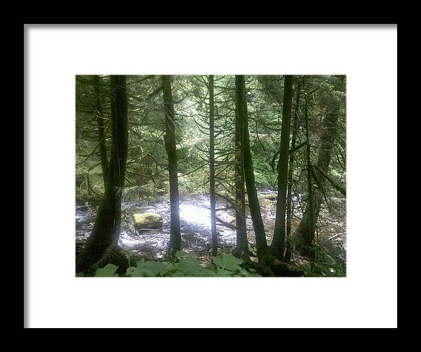 Waterfall Framed Print featuring the photograph Through The Trees by Heather L Wright