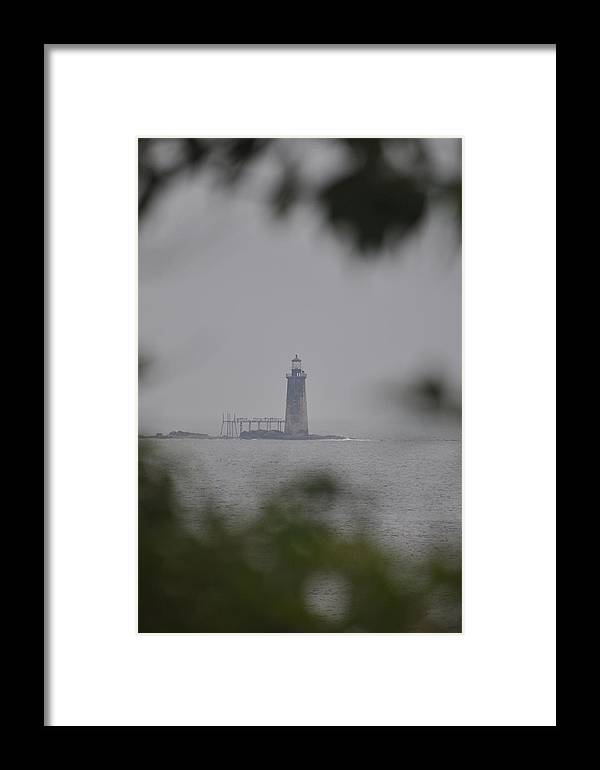 Framed Print featuring the photograph Thru The Trees by Linda Ogburn