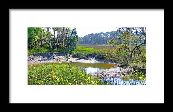 Creek Framed Print featuring the photograph Tidal Creek In The Savannah by Duane McCullough