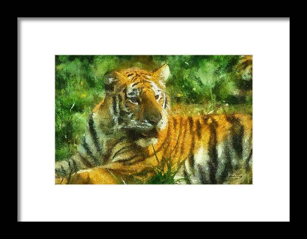 Feline Framed Print featuring the photograph Tiger Resting Photo Art 02 by Thomas Woolworth