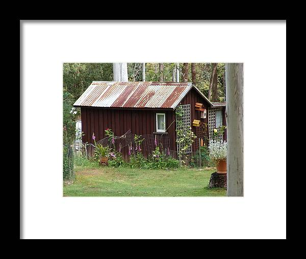 Bird House Framed Print featuring the photograph Tin House by Jeri lyn Chevalier